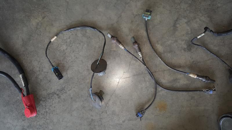 2519601d1486842523 ls complete uncut wiring harness intake throttle body gas pedal tuned computer 013 ls complete uncut wiring harness, intake, throttle body, gas Standalone Wiring Harness 5 3 at gsmx.co