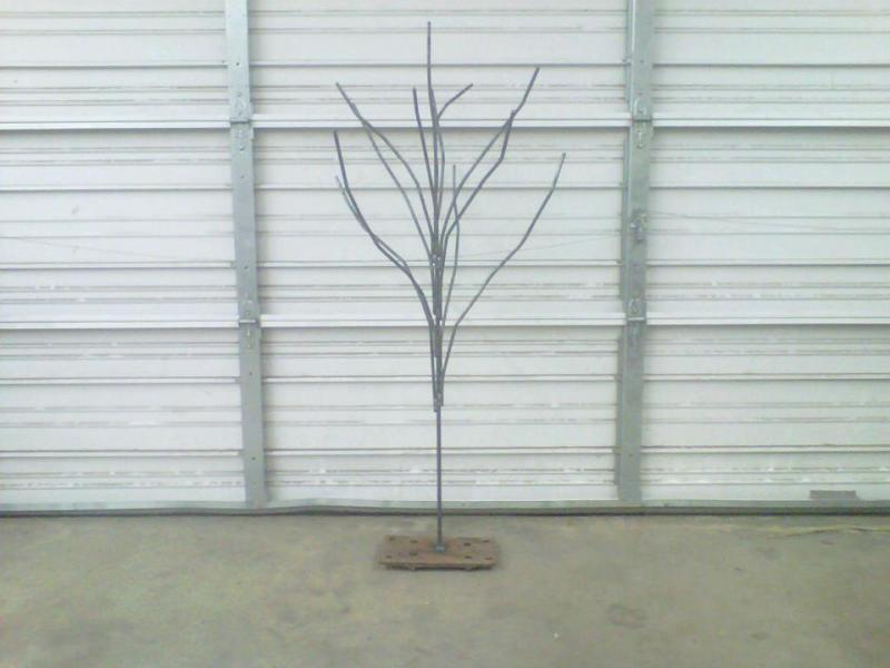 Name:  5684d1345046950-first-attempt-bottle-tree-293290_317444685018646_485155885_n.jpg