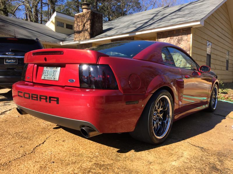 Terminator Cobra For Sale Forum