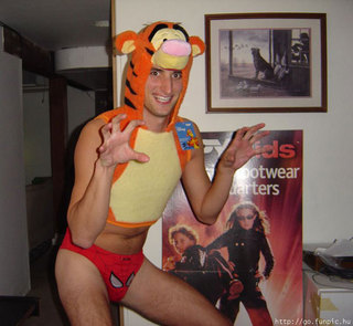 403570d1227035060-who-has-gay-tiger-pic-really-gay-costume.jpg