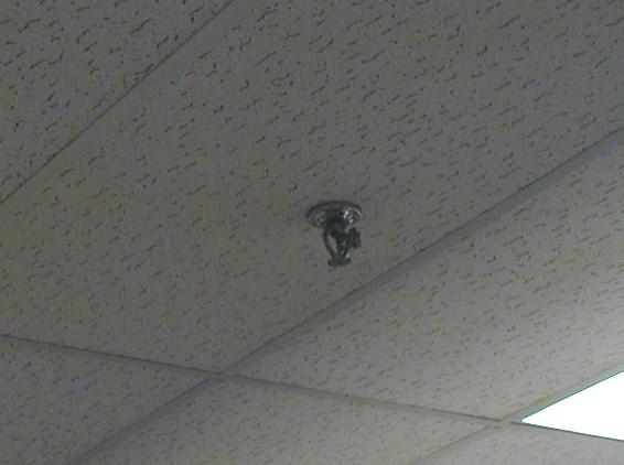 Replacing ceiling tile & sprinkler head in way Pirate4x4