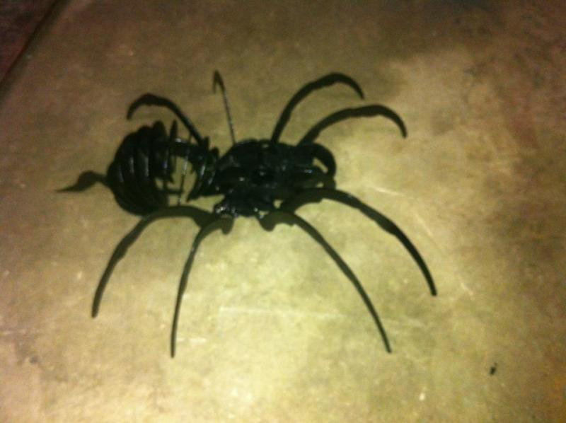 Name:  spider metal art.jpg
